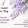 Dia Mundial de Conscientização da Epilepsia: Purple Day 26/03